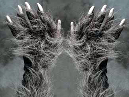File:Hairy-knuckles.jpg
