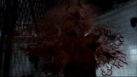 Raphael Death
