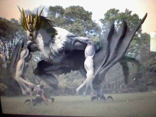 Gara Dragon