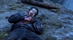 Hallam's death