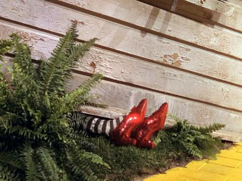 File:Wicked Witch of the East is dead.jpg