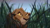 Zira's evil glare