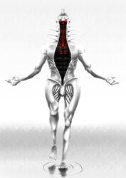 Chakravartin (the Creator)