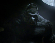 Grodd (The Flash 2014 TV series)