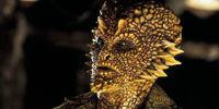 Corn Face