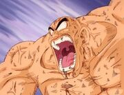 Nappa going Insane