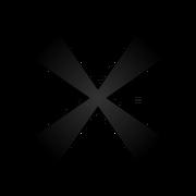 BlackX