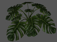 Plant2 redirect