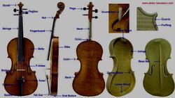 Violin reference 1