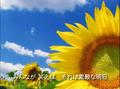 Thumbnail for version as of 22:39, May 28, 2015