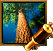 Discovery Icon