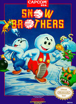Snow Brothers NES cover