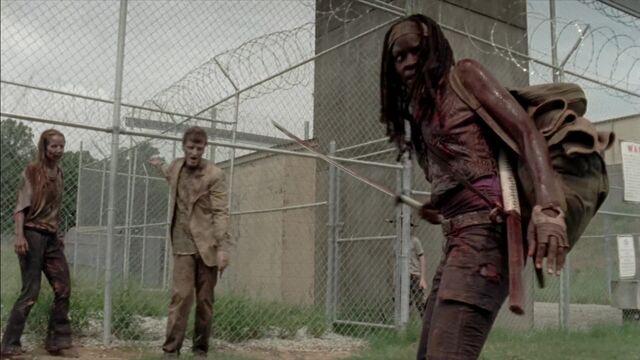 File:The Walking Dead S03E07 0353.jpg