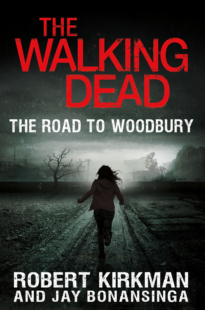 Image result for walking dead road to woodbury