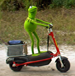 File:Kermit-scooter1.jpg