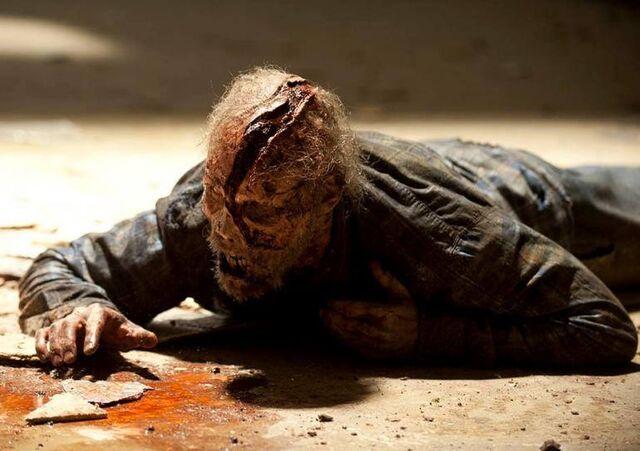 File:Cracked Face Walker.jpg