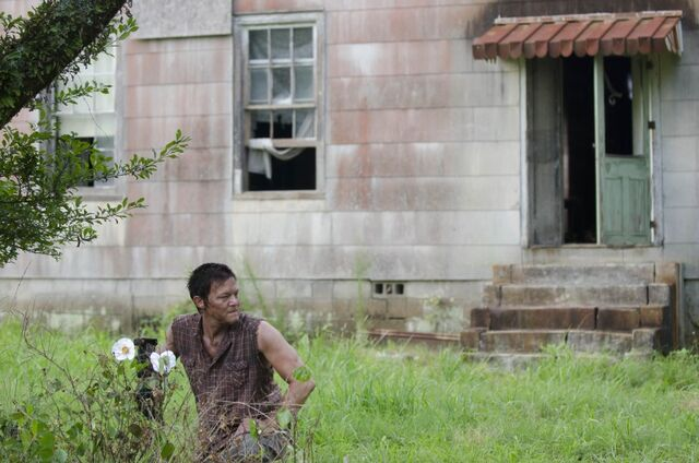 File:Walking-dead-cherokee-rose1.jpg