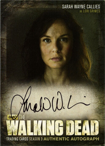 File:Auto 1-Sarah Wayne Callies as Lori Grimes.jpg