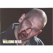 The Walking Dead - Sticker (Season 2) - S24