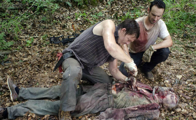 File:Walkingdead2.1.jpg