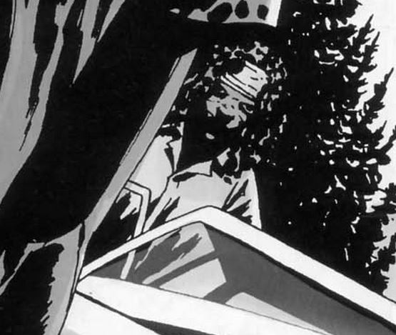 File:Michonne Issue 34 29.JPG