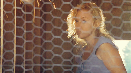 File:Patricia Fence.png