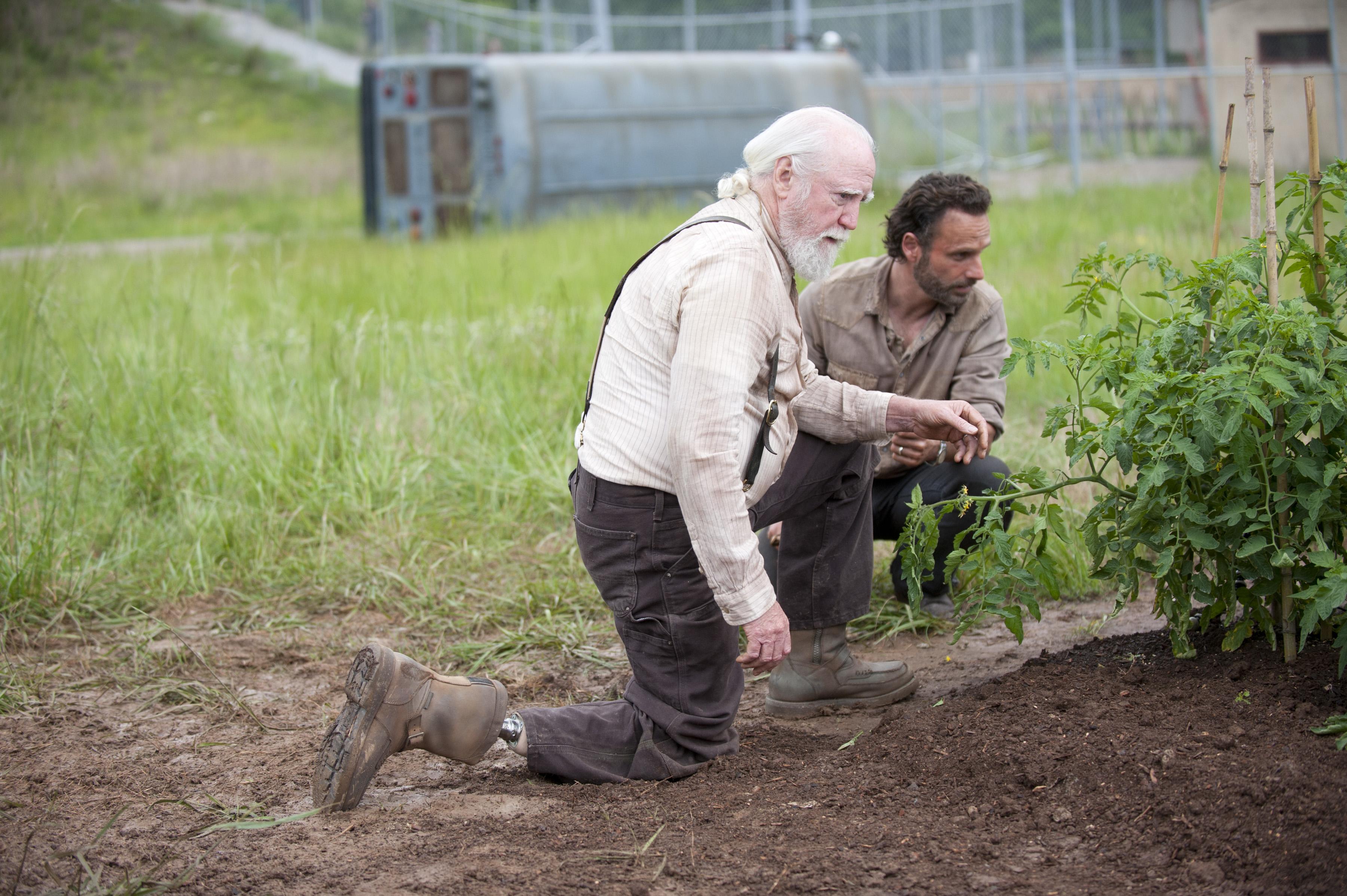 File:Planting crops.jpg