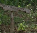 Crighton Dallas Wilton (TV Series)
