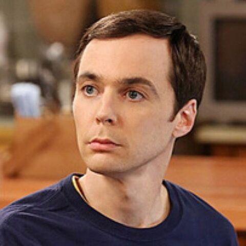 File:Sheldon hue.jpeg