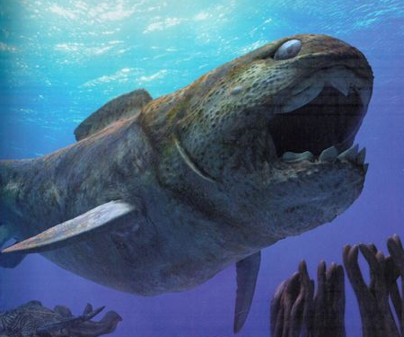 dunkleosteus walking with wikis fandom powered by wikia
