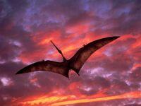 WWD Ornithocheirus