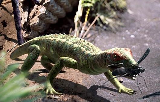 File:Petrolacosaurus.jpg