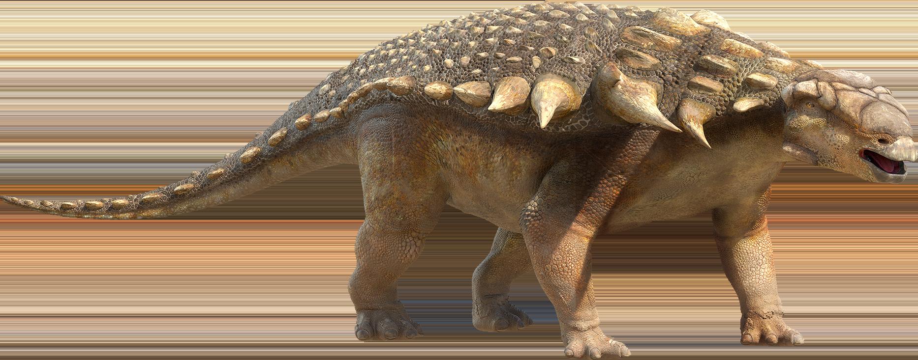Image - Ankylosaur.png | Walking with Dinosaurs Wiki ...