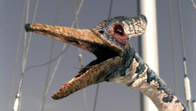 File:Pteranodon sm.jpg