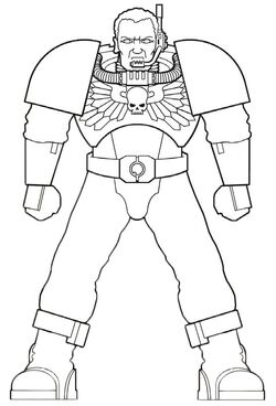 DW Scout Armour Schematic