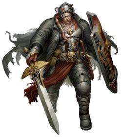 Crusader-1