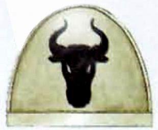 File:Taurans Shoulder Pad.jpg