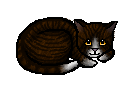 File:Timberclaw.kit.png