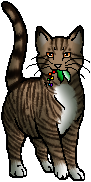 Medicine Cats/Medicine Cat Apprentices