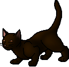 Shrewpaw (TC).apprentice