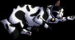 Macgyver.kittypet