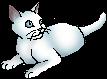 Snowkit (TPB).star