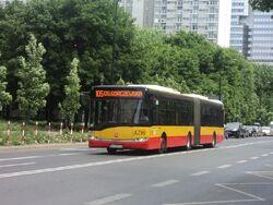 DSC09562.jpg