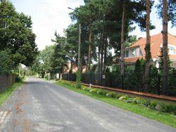 Mlawska (1).jpg