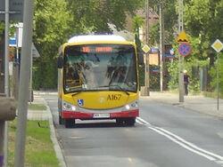 Autobus 196 (Al. Komandosow).jpg