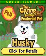 HuskyCaringValleyAd