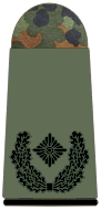 File:Army Major.png