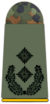 Army Lieutenant Colonel