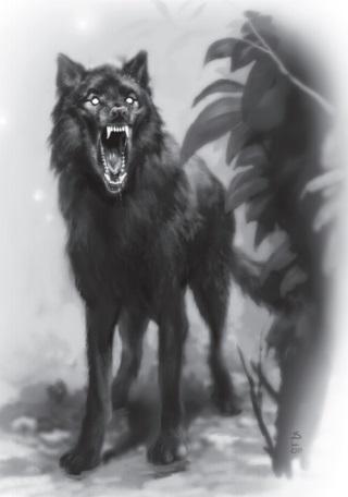 Shadow Wolf Photo by wizard3521 | Photobucket