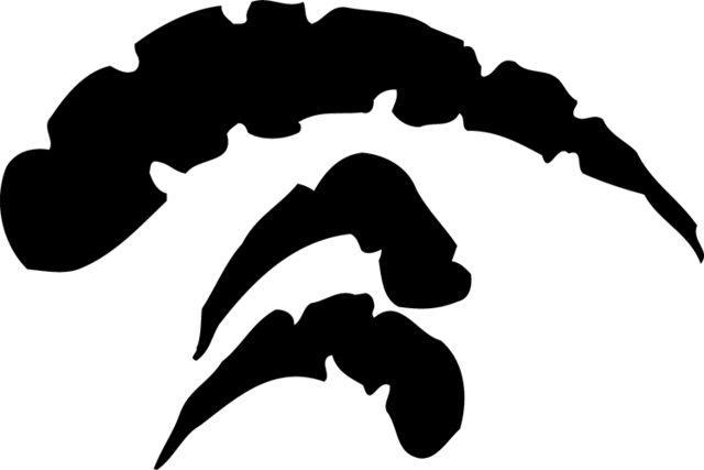 File:GlyphStone.png